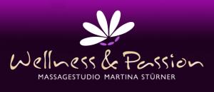 logo mit bg